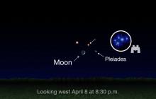 What's Up for April: Mars, Polaris, Saturn, Jupiter