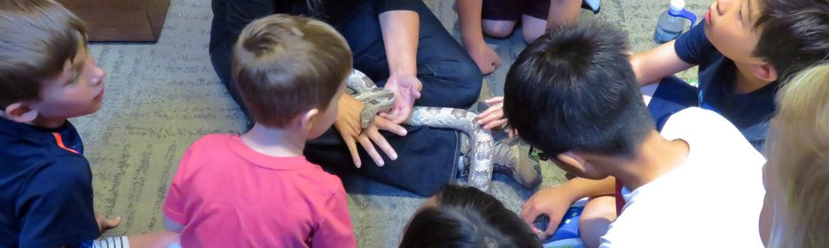 Volunteers Make Nature Education Fun at Placerita Park