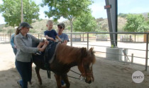 Carousel Ranch Prepares for Their Annual 'Heart of The West' Fundraiser