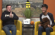Golden Valley TV, 10-28-19 | Socktober