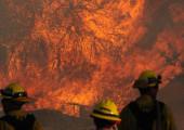 Tick Fire Photo Gallery