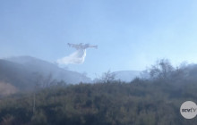 Brush Fire in Placerita Canyon Burns Nine Acres