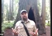 Humboldt Redwoods State Park, Redwood Heroes