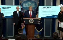 White House Coronavirus Task Force Briefing, 3/31/2020
