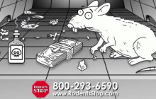Rodent Control Company Los Angeles | Rodents Stop | Southern CA Rodent Control Company