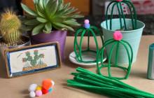 Pipe Cleaner Cactus Crafts | Virtual Rec Center
