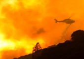 Powerful Lake Fire explodes to 10,000 acres in Angeles National Forest