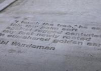2019 Sidewalk Poetry Contest: Abi Wurdeman
