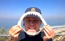 Great White Sharks at San Clemente State Beach